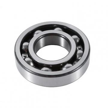 NSK 6007Z  Single Row Ball Bearings