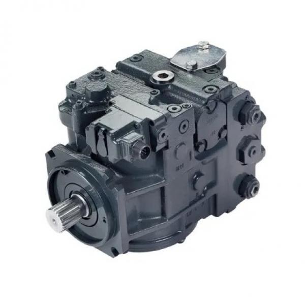 Vickers 4525V-50A21-1CC-22R Double Vane Pump #2 image