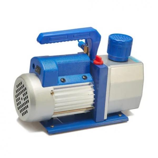 Vickers PV032R1K1A1VFDS Piston pump PV #3 image